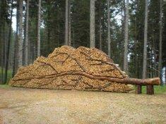 дрова картинка 5