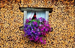 як скласти дрова фото