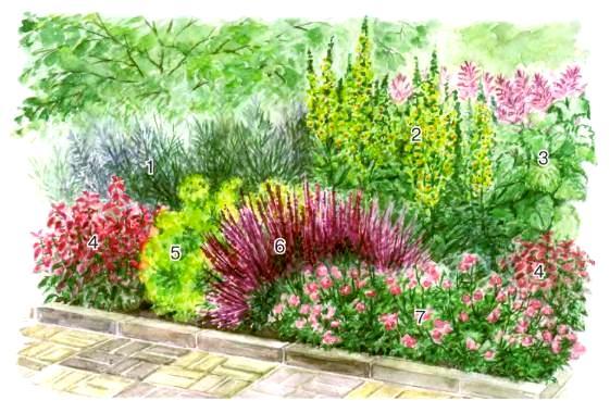 квітник зображення 17