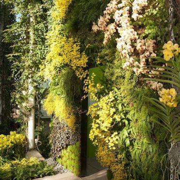 вертикальне озеленення зображення 5