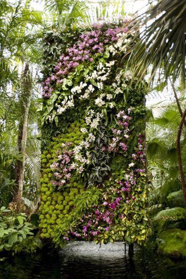 вертикальне озеленення зображення 12