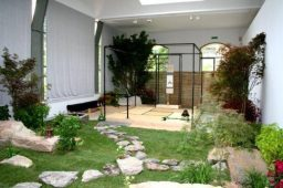 Японський сад зображення 14