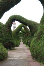 ідеї для саду картинка 2