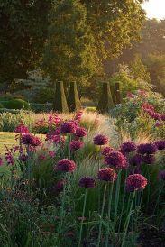 ідеї для саду картинка 21