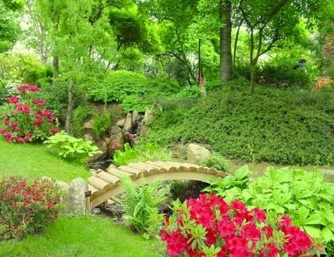 Японський сад зображення 21