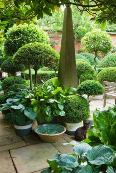 ідеї для саду картинка 33