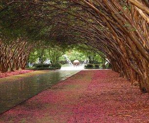 ідеї для саду картинка 38
