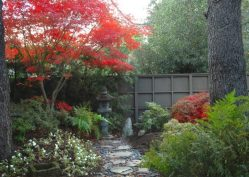Японський сад зображення 4