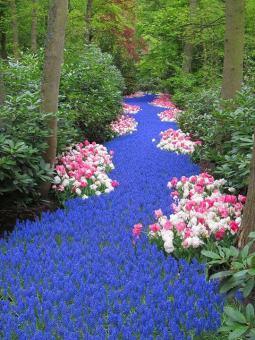 ідеї для саду картинка 46