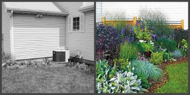 ландшафтний дизайн подвіря картинка 7 до і після