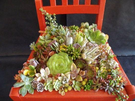 Ідеї для саду зображення 1