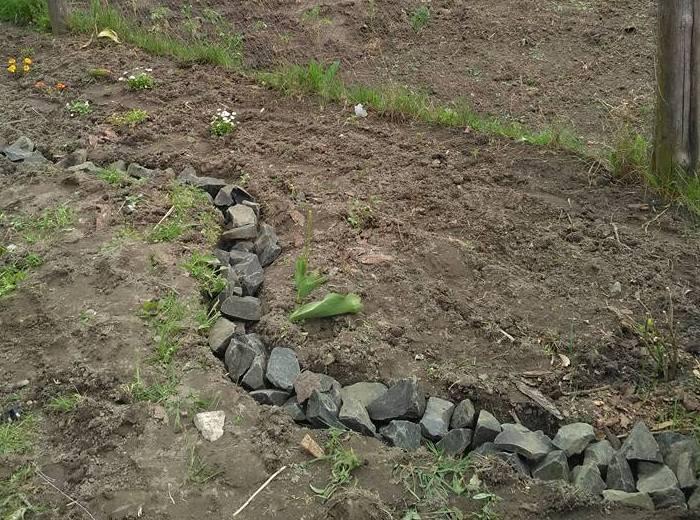 У мене була купа зайвого каміння, яке не використали, заливаючи фундамент. Ним і відділила міксбордер