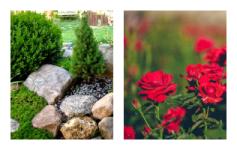дизайн квітників фото