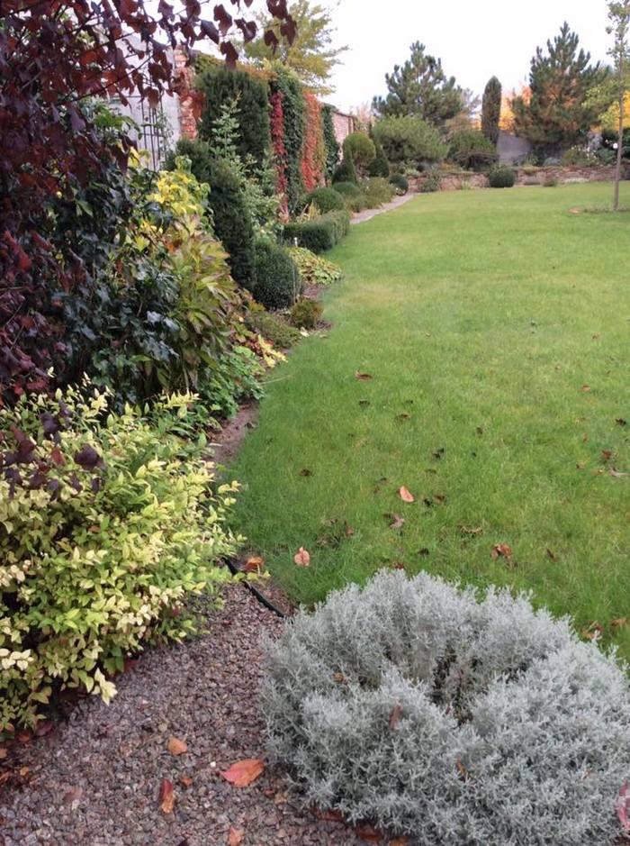 осінній сад