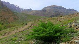 Іран фото