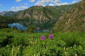 Киргистан, заповідник Сари-Челек фото