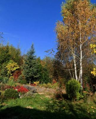 Природній сад фото