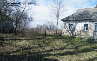 новий старий сад фото
