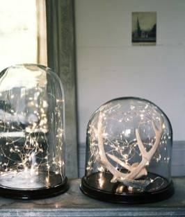 Лампочки під скляним ковпаком