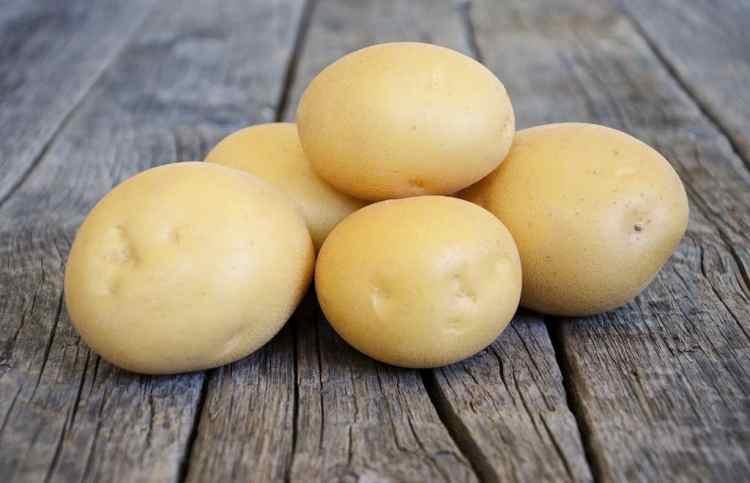 Картопля «Агата»
