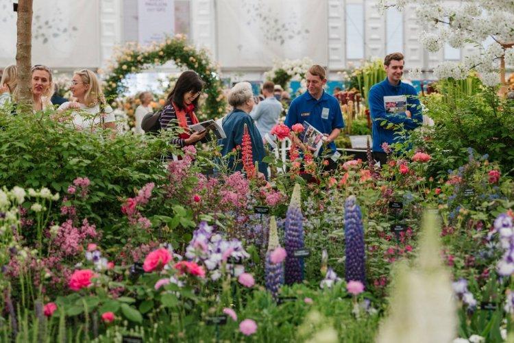 На виставці часто дебютують нові рослини, відроджується популярність старих сортів, намічаються тенденції і створюється садова мода