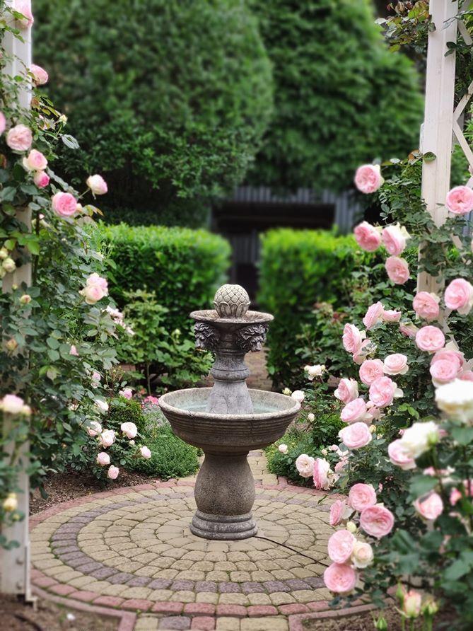 Фонтан об'єднує довкола себе дві клумби, де панують троянди