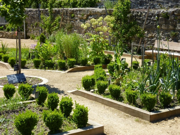 Сад при середньовічному монастирі сьогодні (Jardin-medieval a Geaune)