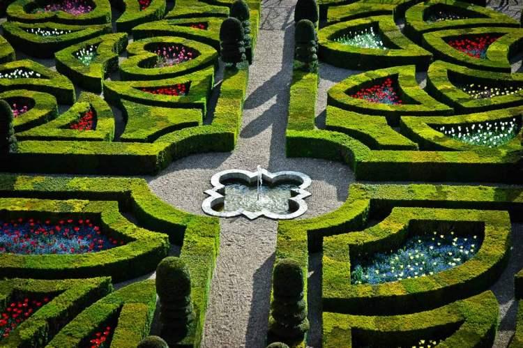 Як наближається весна, тюльпани починають з'являтися в «Садах кохання». Зовсім скоро одягатимуть їх у яскраві кольори...