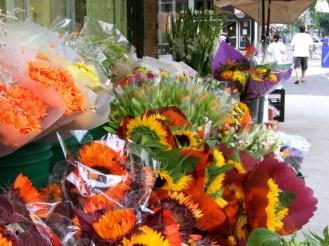 Flowers @ Roncesvalles Avenue_6283980995_l