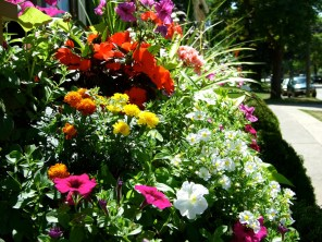 Niagara on the Lake_6414133651_l