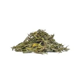 feuilles stevia