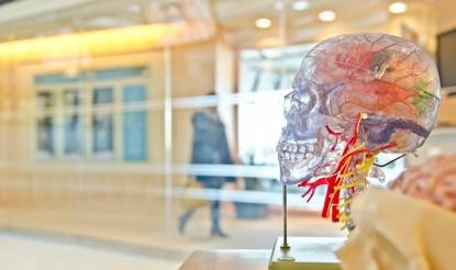 Achtsamkeit und Meditation in der Wissenschaft