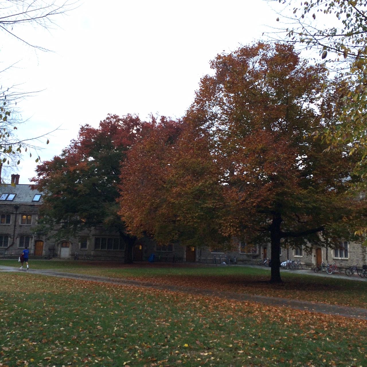 Princeton22