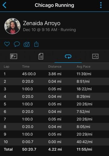 Illinois Marathon-20