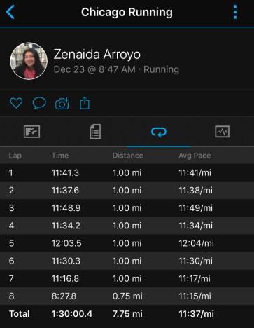 Illinois Marathon-33