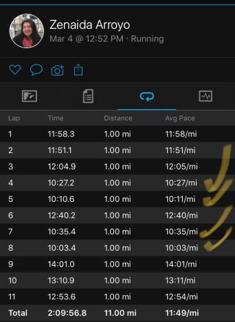 Illinois Marathon-143