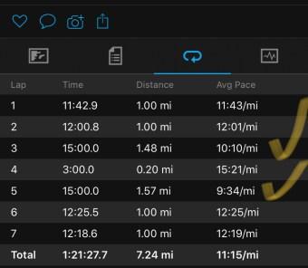 Illinois Marathon-178