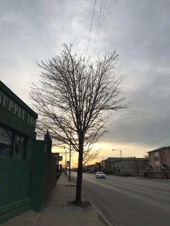 Illinois Marathon-197