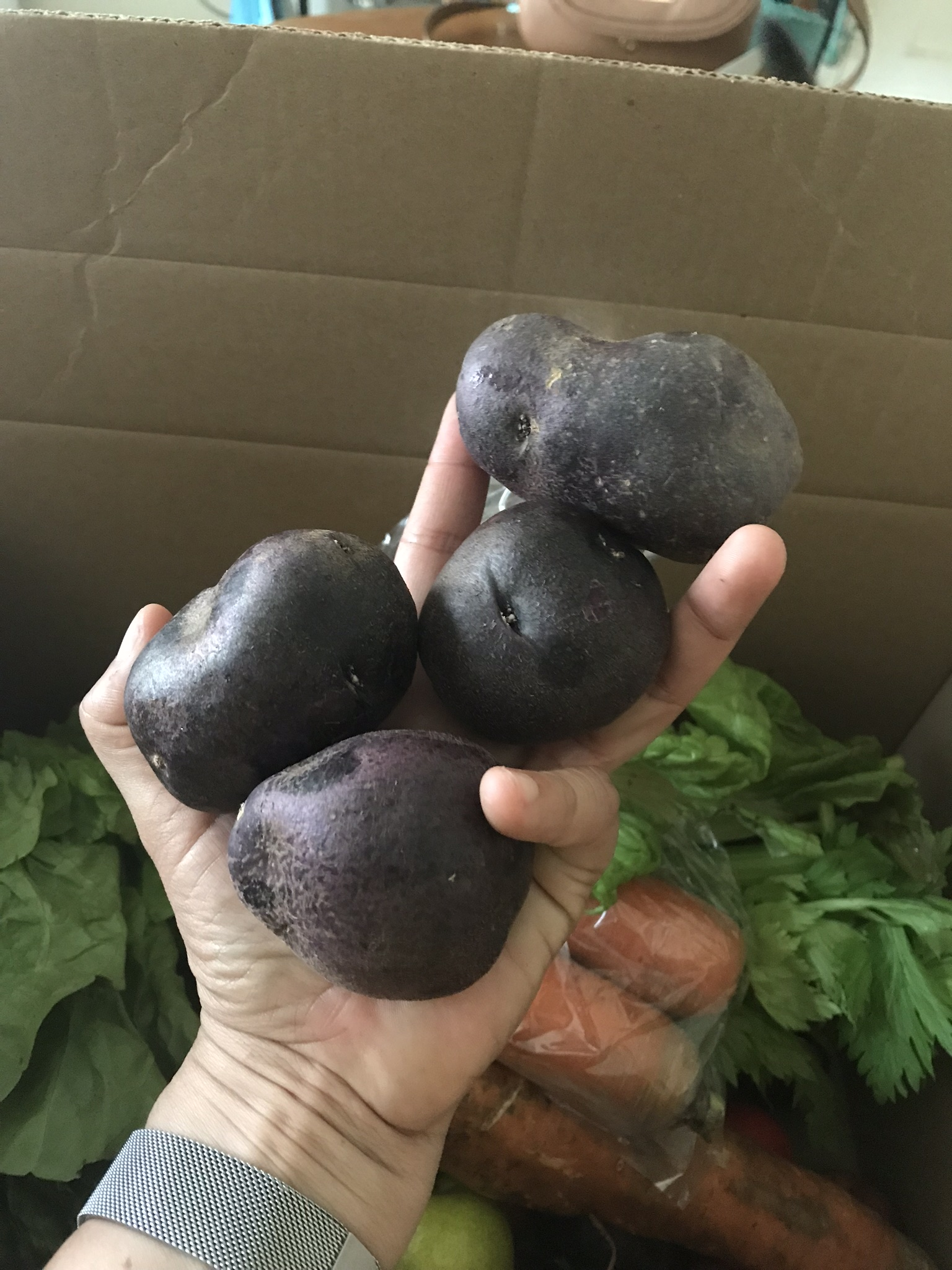 Imperfect Produce-4