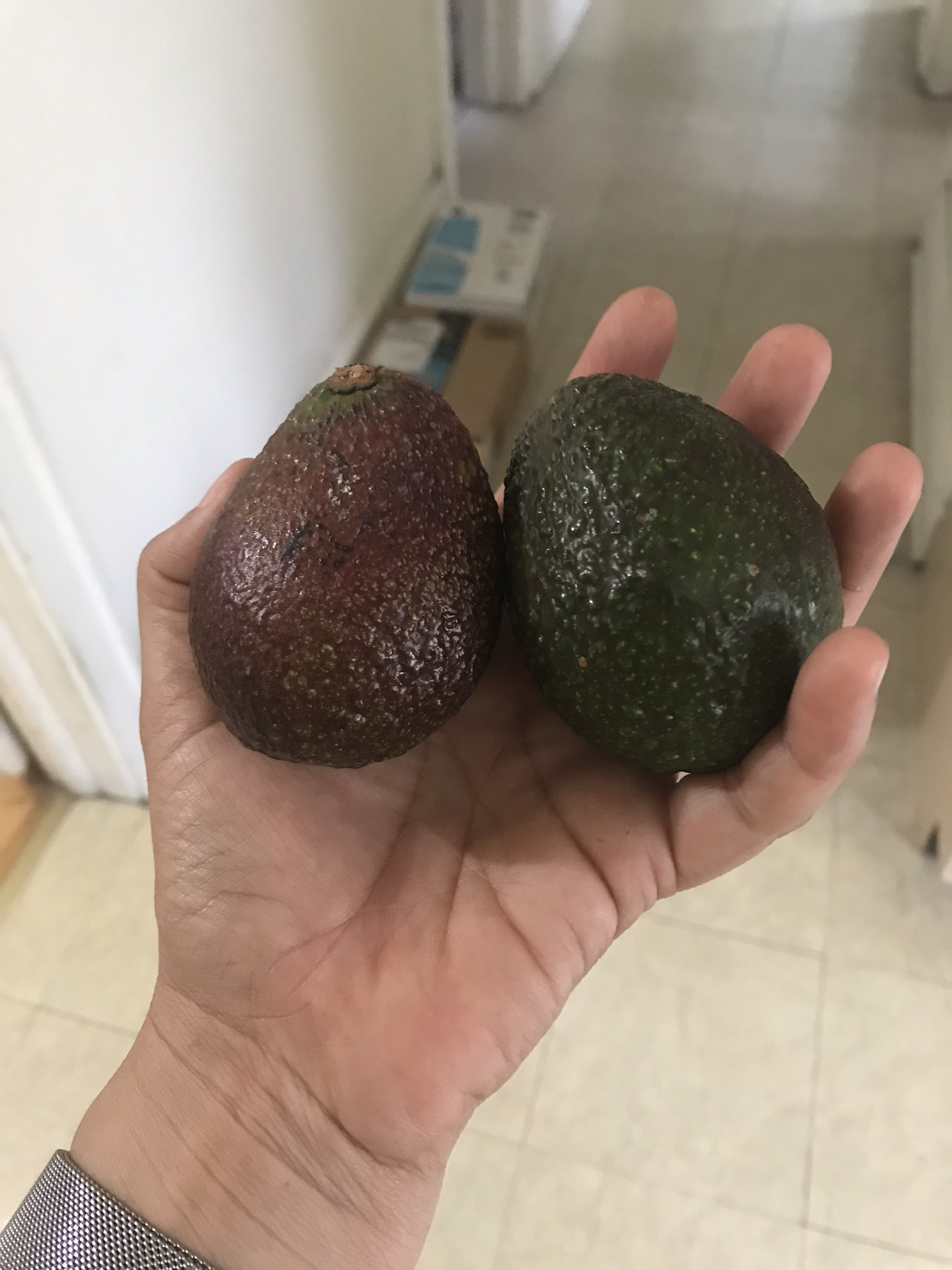 Imperfect Produce-6
