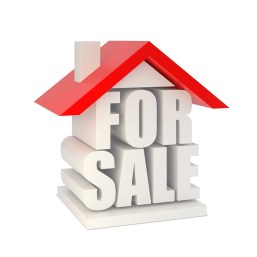 For Sale-1.jpg