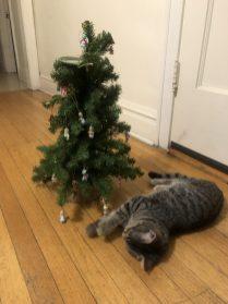 Christmas Tree-5