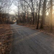 Morton Arboretum-14