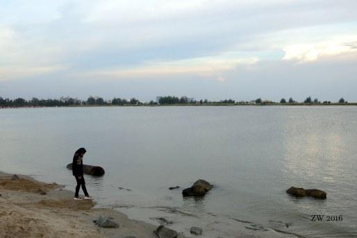Paseo en la bahía