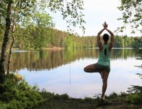 zenana, pysähtyminen, meditointi, aurinkotervehdys, vrksa, puuasana