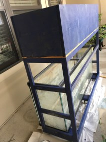 Small-scale Aquaponics Using a 55 Gallon Tank