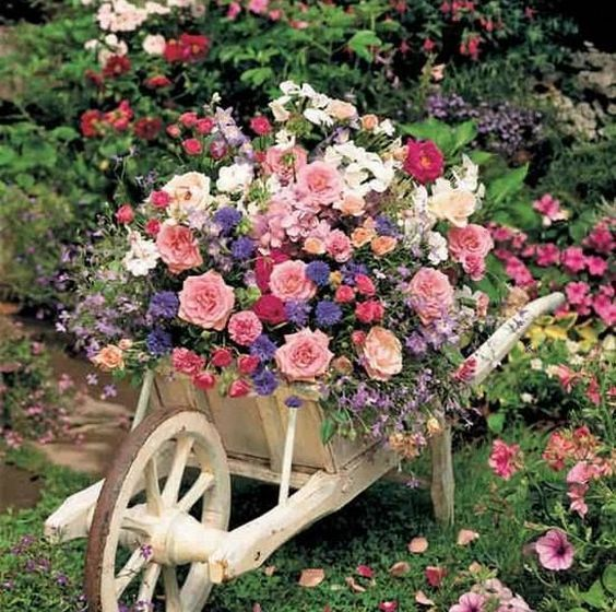 Ideje za uređenje vrta