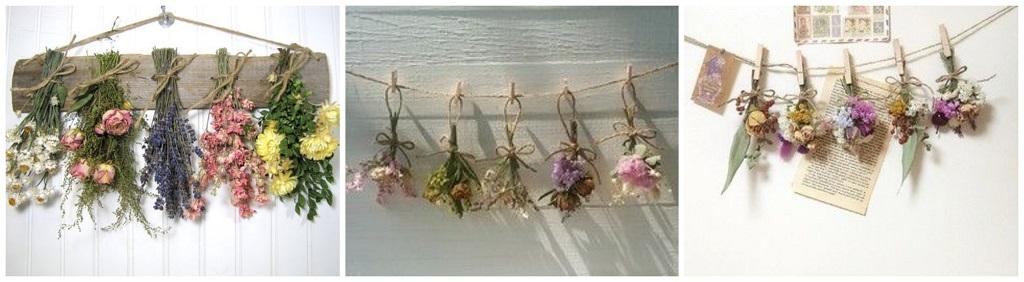 viseće suho cvijeće