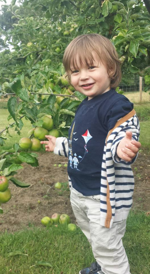 Day trip to Bicester Village with toddler. Waterperry orchards nearby