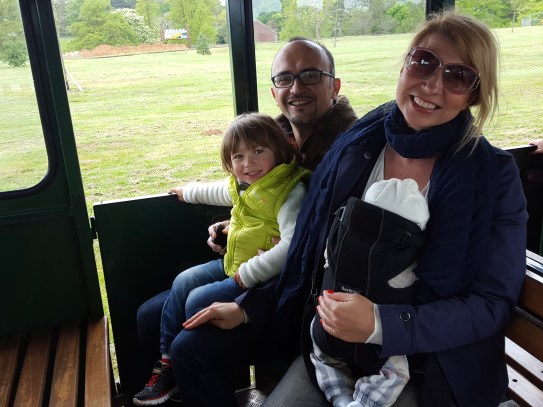 Best day trips from London: Woburn safari